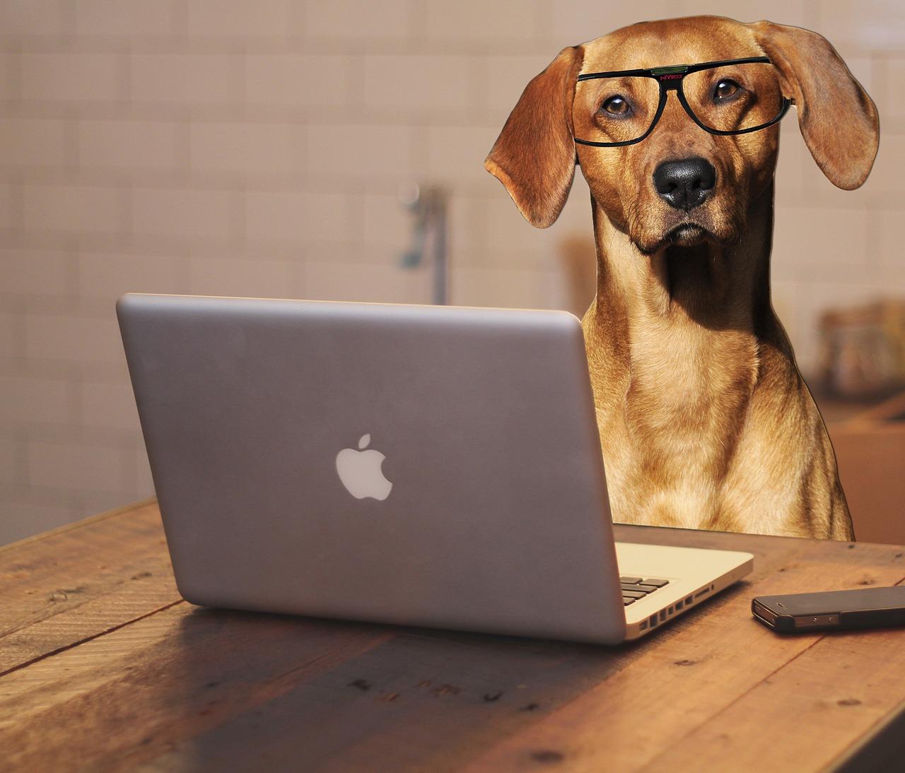 Comment choisir son ordinateur portable ?